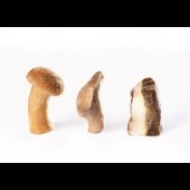 Mushrooms Mix 10% Porcini (2.2 Lb )
