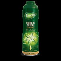 Teisseire Elderflower Syrup (Fleur de Sureau) - Concentrated - 20.3 fl.oz. 60cl